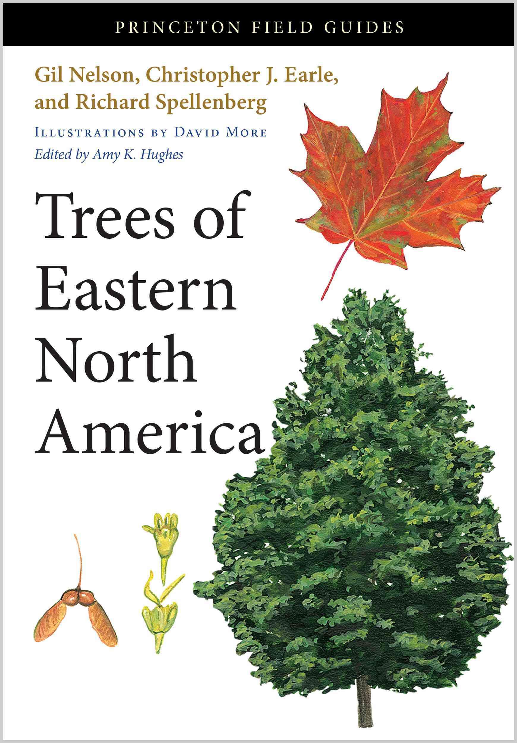 Trees of Eastern North America By Nelson, Gil/ Earle, Christopher J./ Spellenberg, Richard/ More, David (ILT)/ Hughes, Amy K. (EDT)
